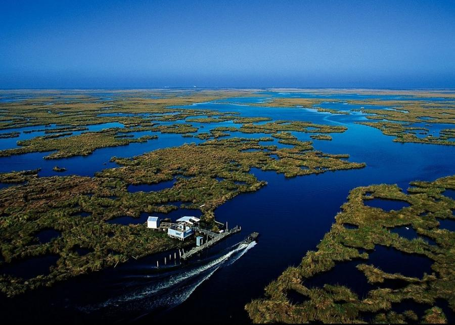 Gulf Utility Invests in the True Value of Wetlands « Great ...