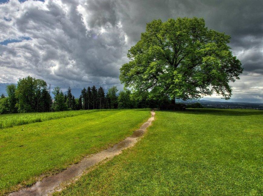 there_will_be_rain_by_burtn